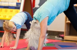 downward facing dogs